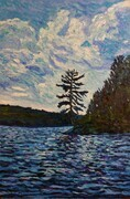 Pine on Drag Lake