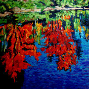 Reflections on Oxtongue River